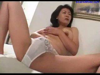 japanese, cougar, gammel