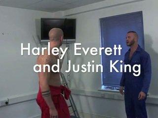 Harley everett en justin koning