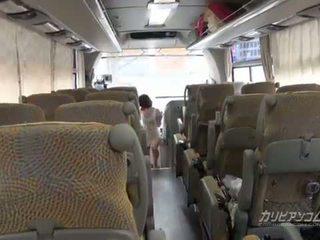 4x4 caribbean אוטובוס סיור התחלות מן זין מוצצת