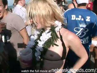 Ballīte meitenes licking whipped cream no no eachother koledža spring pārtraukums