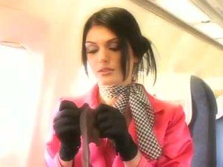 Mooi stewardess zuigen een hard penis