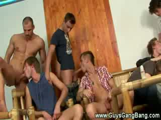 groupsex, gay, stud