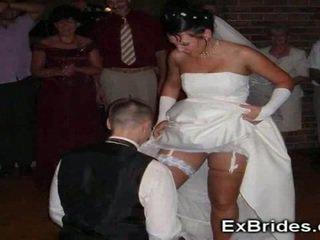 Abielus