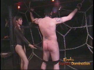 Extremely kívánós stallion likes being tied fel és whipped