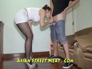 Lenket opp podgy asiatisk piglet