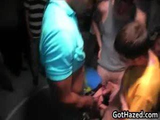 Neu neu hochschule lads erhalten homo hazed 19 von gothazed