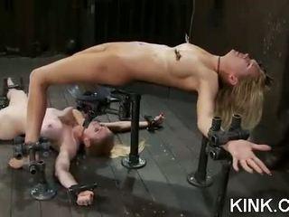 Seksuālā meitene arrested