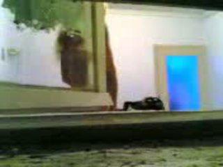 Graikiškas presentator taken a vid be knowing tai video