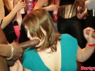 Amateur european cocksucking and tugging
