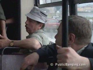 avalik, auto, buss