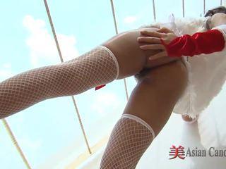 oriental great, ideal asian girls, hot fishnet