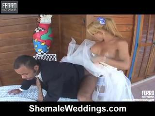 check shemale porn, most mix action, hq shemale sex fuck