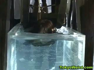 Office girl bondage water wheel Video