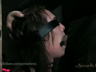6 porno stars tied up and cumming