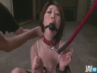 Delectable Rio Kagawa Blindfolded Led On A Leash And Skull
