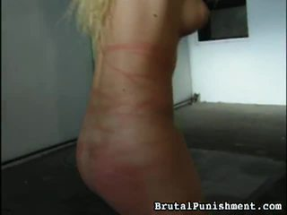 Great Collection Of BDSM Porn Clips From Brutal Punishment