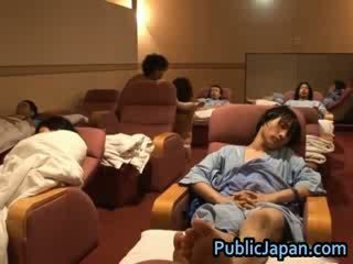 většina japonec plný, voyér většina, velký exotický zábava
