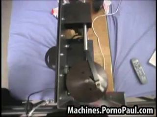Pussy gets attention from machines