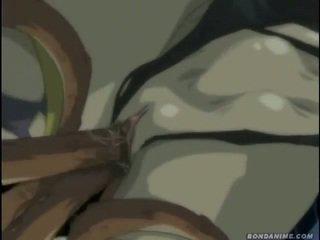 hentai spaß, neu animation groß, online cartoons