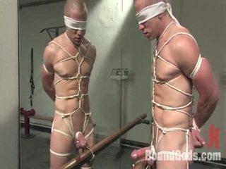 quality gay film, kinky tube, any orgasm movie