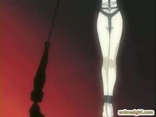 plezier hentai video-, beste ezel actie, gratis hardcore