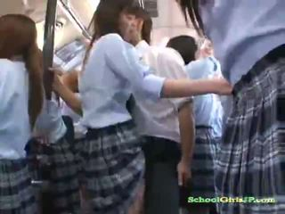 blowjob, schoolgirl, group