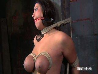 hardcore sex, bondage sex, nudist heeft seks in publc tube