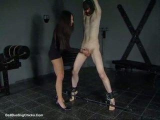 slapping cock and ballbusting cbt