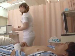 Hunt cherry puma medmāsa
