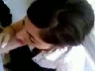 nice webcams best, you amateur