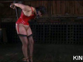 seks scène, voorlegging porno, plezier bdsm