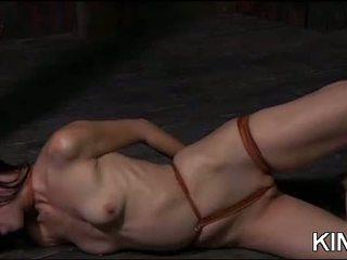 alle seks, vers voorlegging neuken, bdsm