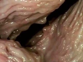 vaginal sex, cum shot, cream pie