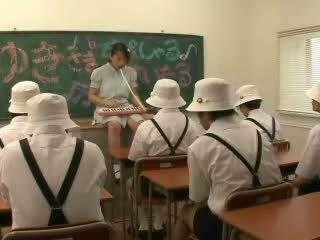 jautrība, japānas, klase