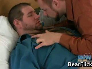 gay, bear, blowjob