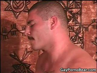 Harig zwart dekhengst hebben extreem anaal neuken