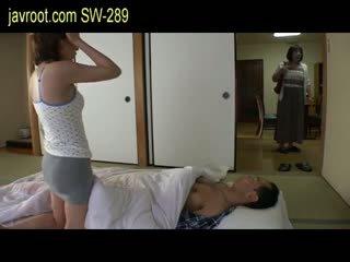 japonez, prunc, sânii mici