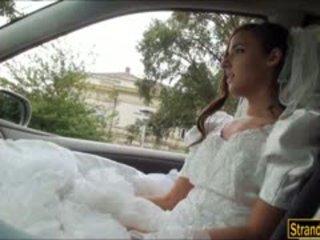 عروس إلى يكون amirah adara ditched بواسطة لها fiance و مارس الجنس
