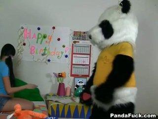 Panda gets young teen babe