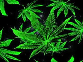 punker, smoke, weed