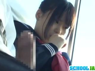 ציבורי אוטובוס puts שלה moth בפנים the אוטובוס riders lap