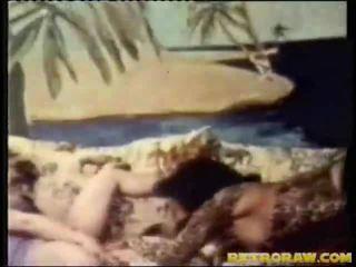 mačička mláďatá videí, chick uniformy, dospievajúce mláďatá sania